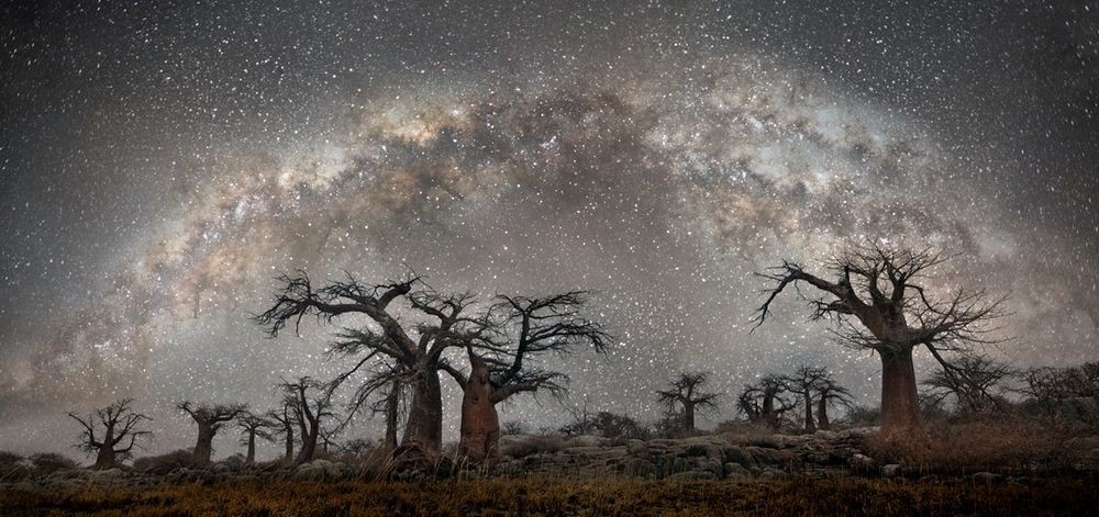 Созвездие Андромеда. Автор Бет Мун