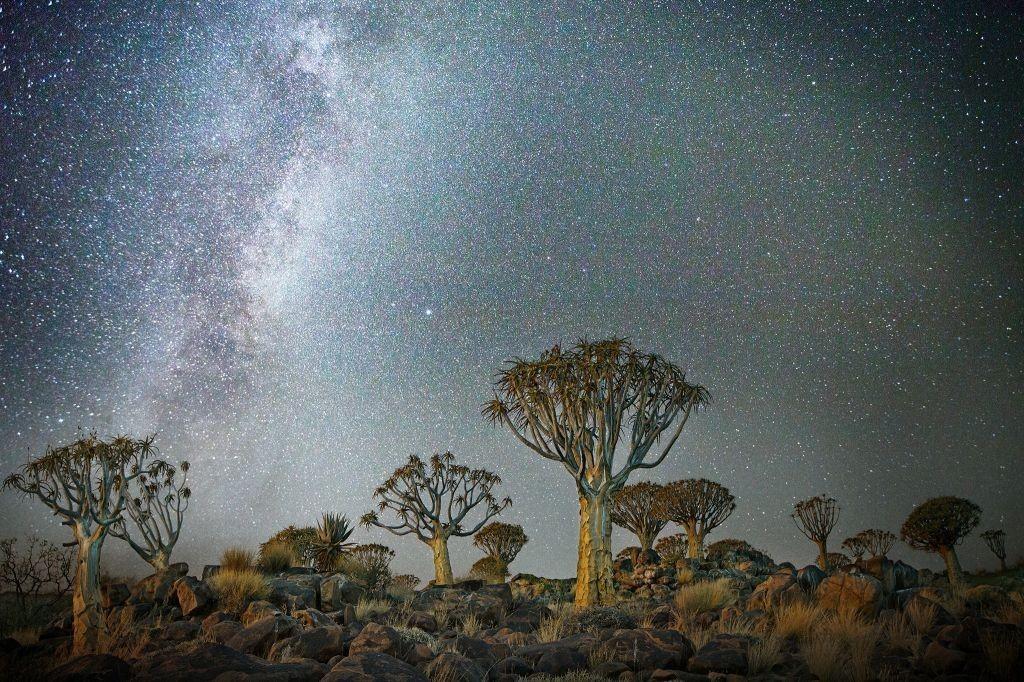 Созвездие Треугольник в районе города Китмансхупа, Намибия. Автор Бет Мун