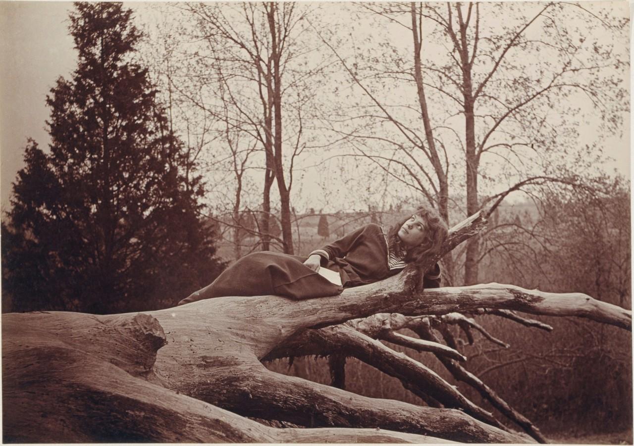 Беатрис Том на дереве, Нью-Джерси, 1893 год