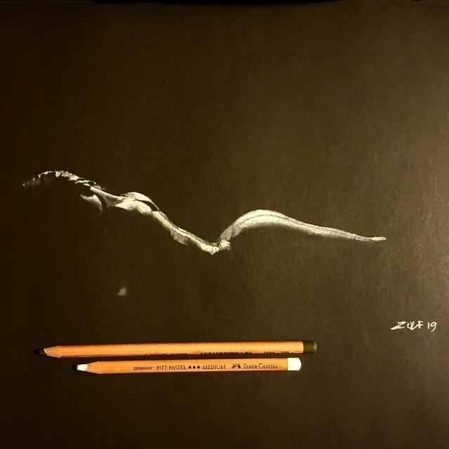 Серия рисунков «Из темноты». Автор Зульф (13)