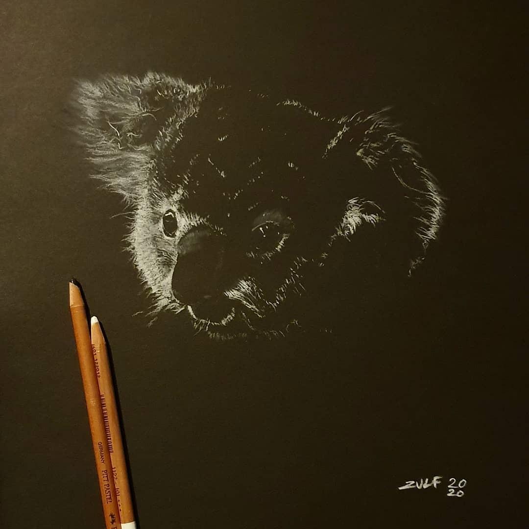 Серия рисунков «Из темноты». Автор Зульф (16)