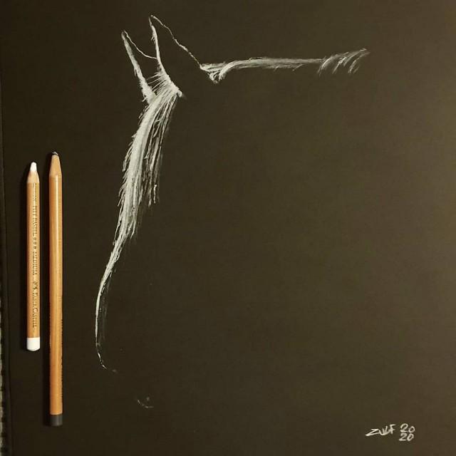 Серия рисунков «Из темноты». Автор Зульф (17)