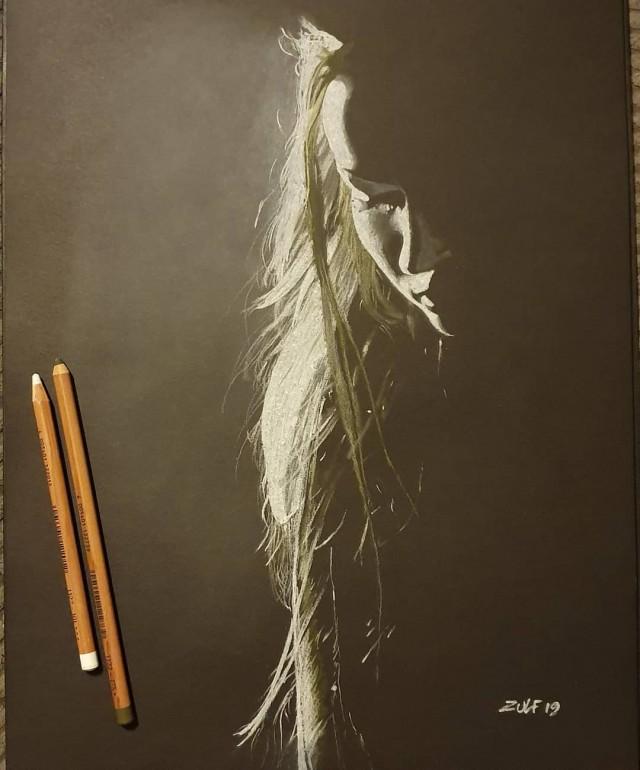 Серия рисунков «Из темноты». Автор Зульф (2)