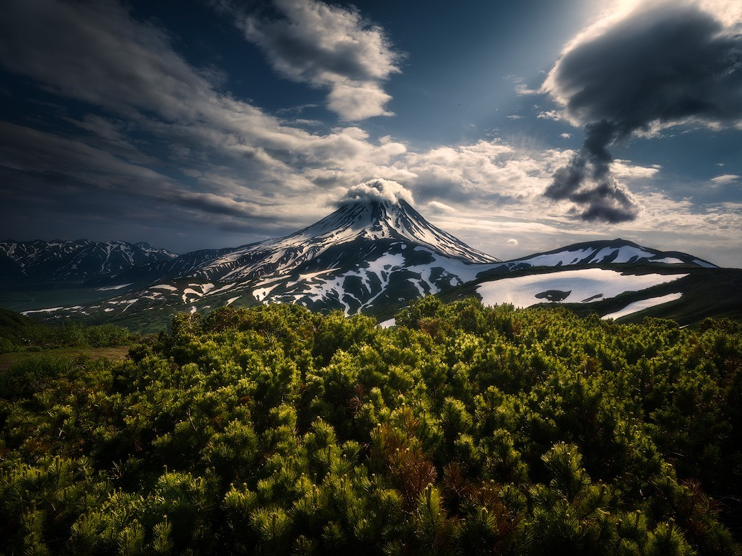 Дикая природа, Камчатка. Автор Изабелла Табаччи