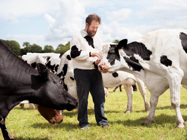 Крис среди коров. Автор Джозеф Форд