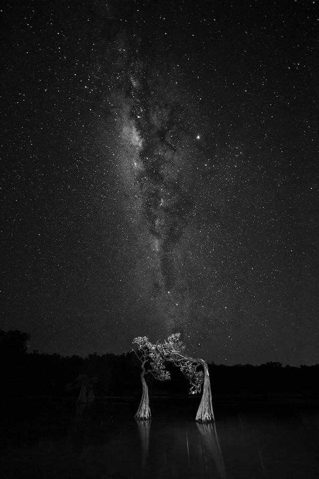 3 место в категории «Ночная фотография», 2020. «Танцы со звёздами». Автор Сви Синг Винсент Лим