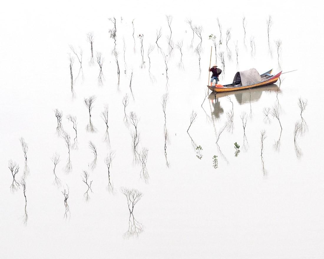 3 место в категории «Пейзаж», 2020. «В мангровых зарослях». Автор Хильда Чемпион