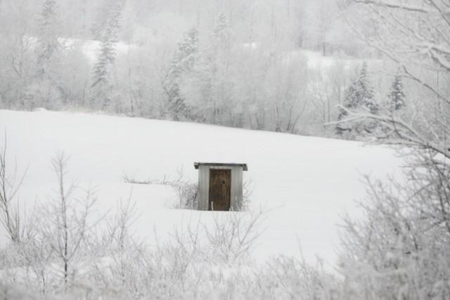 Финалист в категории «Открытая тема», 2020. «Один в холоде», Канада. Автор Иван Бедард