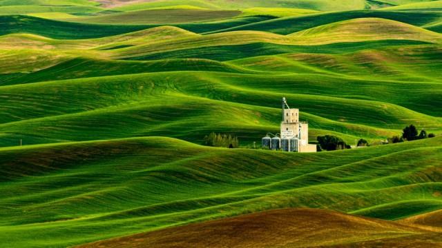 Финалист в категории «Пейзаж», 2020. «Волны зерновых», штат Вашингтон. Автор Моррис Асато