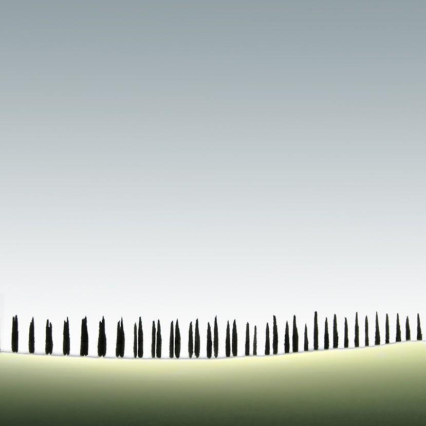 Финалист в категории «Файн-арт», 2020. «Тосканские кипарисы». Автор Митчелл Анолик