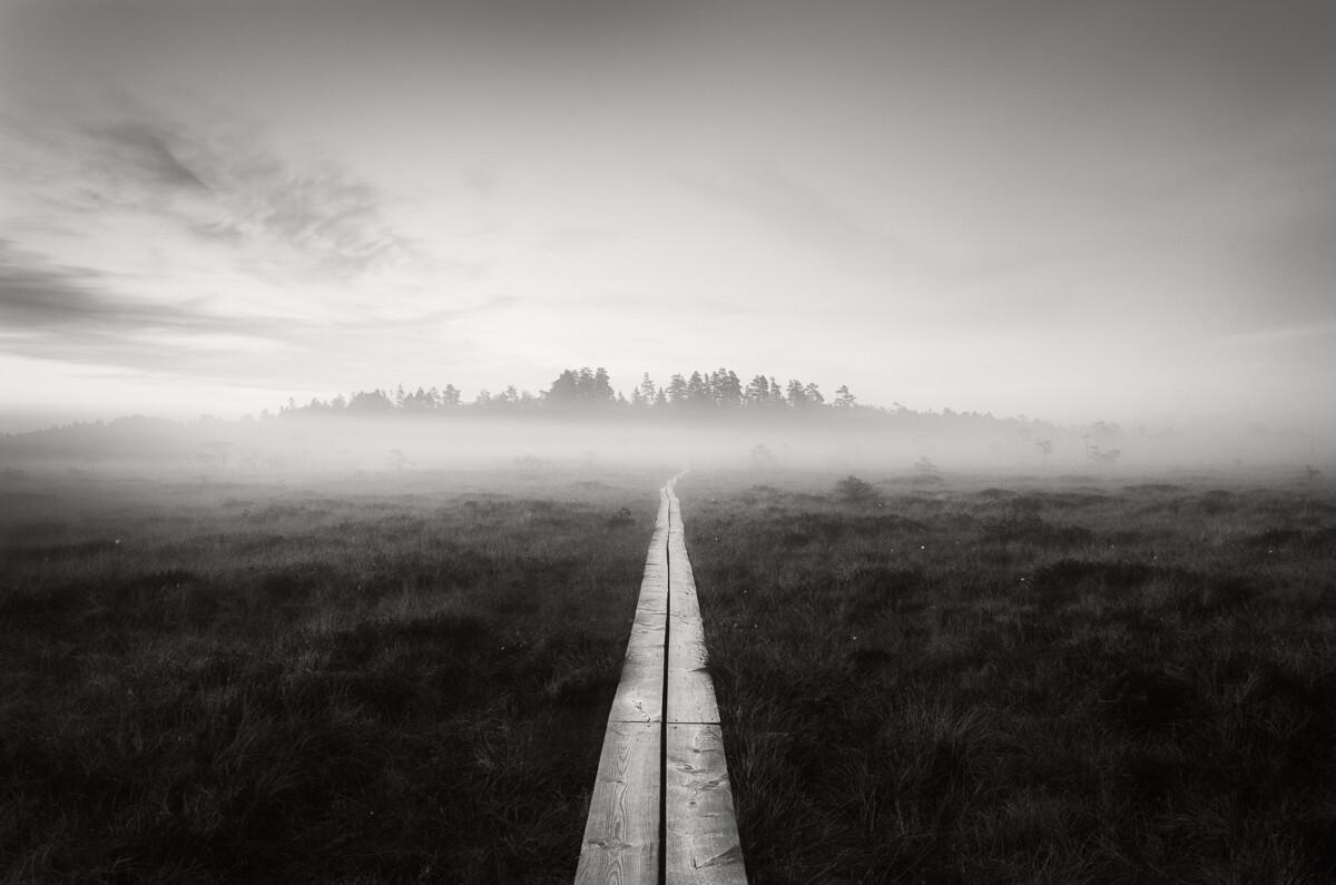 2 место в категории «Пейзаж», 2021. «Путь». Сумерки на болоте в Эстонии. Автор Рикардо Куартеро