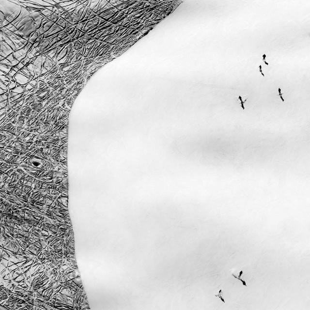 1 место в категории «Аэрофотография», 2019. «Знаки». Автор Розарио Чивелло
