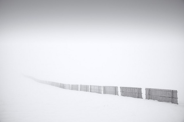 Финалист в категории «Файн-арт», 2019. «Следуй за забором». Туманная зима в Швейцарии. Автор Доминик Дубид