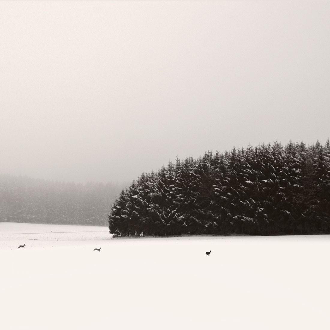 2 место в категории «Файн-арт», 2019. Зимний пейзаж в Баварии из серии «Молчание». Автор Лена Вайсбек