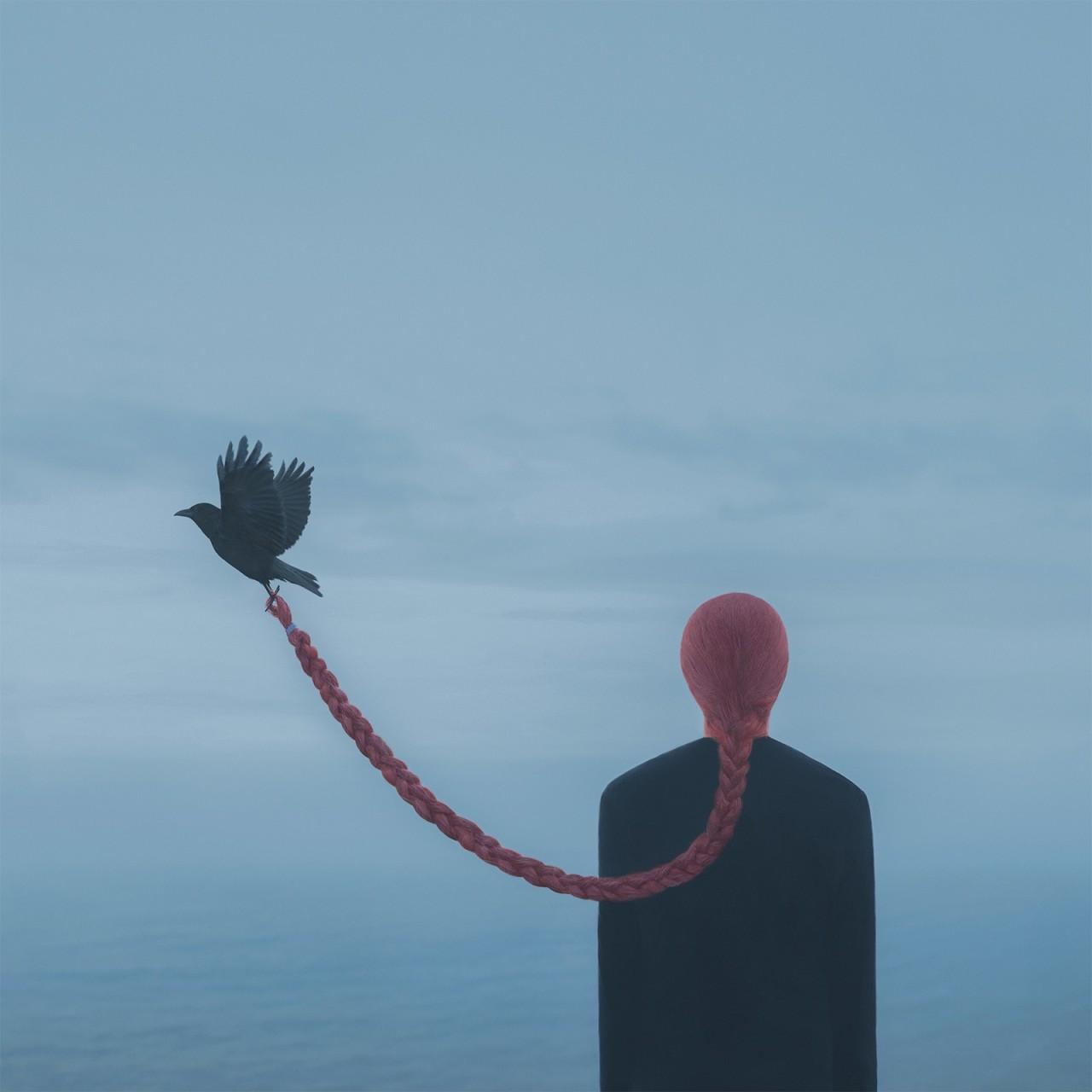 «Бесшумный полёт». Автор Габриэль Исак