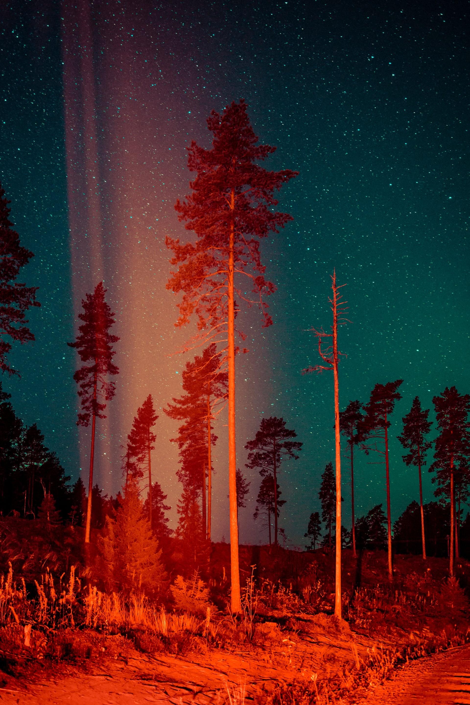 Из фотопроекта «Какой-то небесный огонь». Автор Мария Лакс (5)