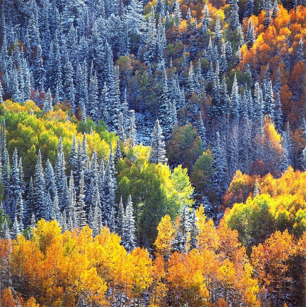 Встретились осень и зима на склоне горы. Автор Кристофер Бёркетт