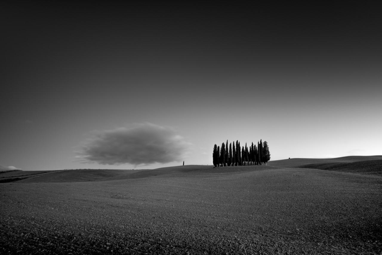1 место в категории «Природа» среди профессионалов, 2020. «Кипарисовые холмы Италии». Автор Адам Крюс