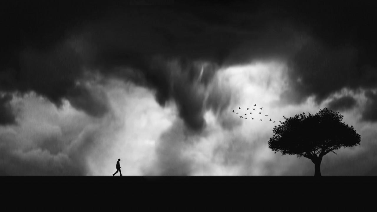 Поощрительная премия в категории «Силуэт» среди профессионалов. «Прогулка в грозу». Автор Тушар Канделвал