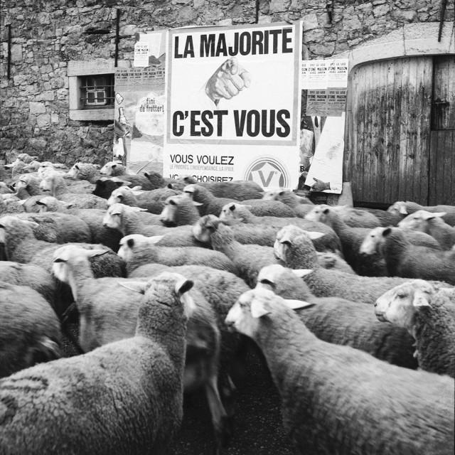 «Большинство». Автор Рене Мальтет