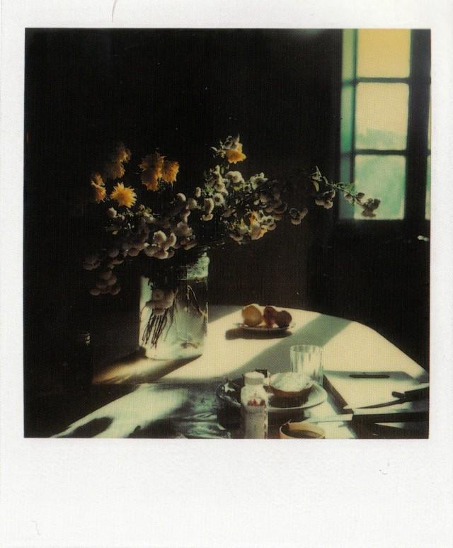 Натюрморт, 1979-84. Фотограф Андрей Тарковский