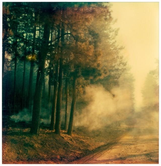Ноябрь в Аризоне. Фотограф Sol Exposure
