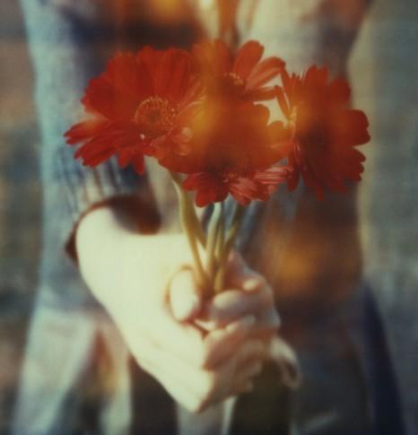 Цветы для вас. Фотограф Нанако