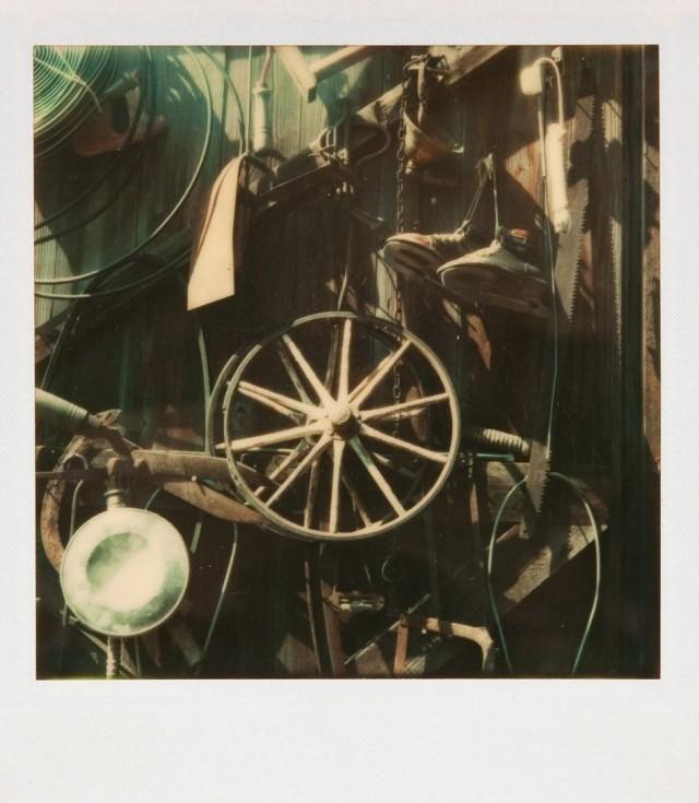 Витрина, 1974. Фотограф Уокер Эванс