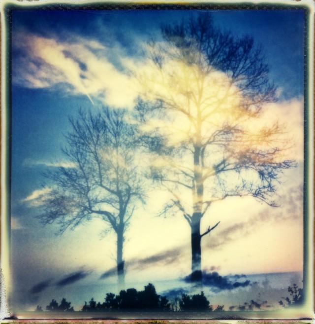 «Призрачный пейзаж». Фотограф Энди Дженкинс