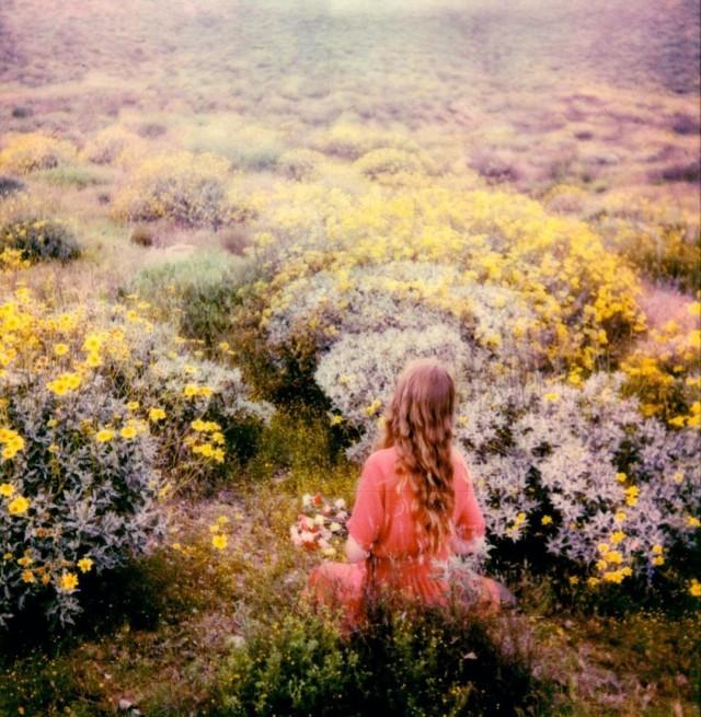 Девушка среди цветов. Фотограф Брэнди Фокс