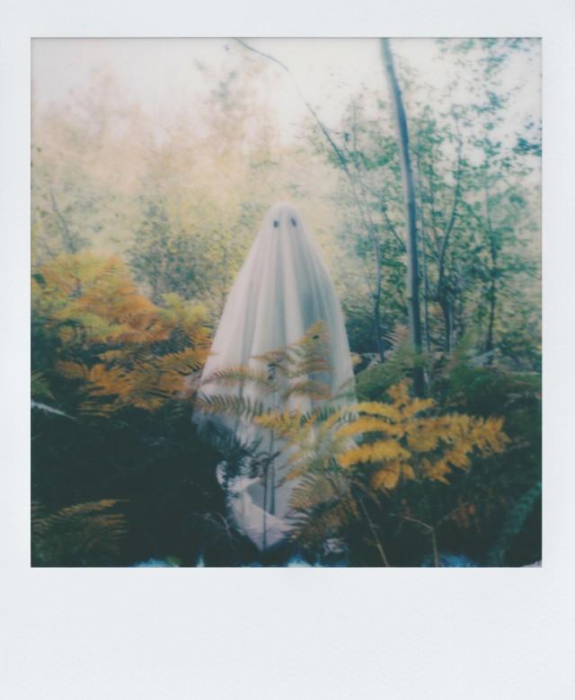 Дружелюбный призрак. Фотограф gxh1000