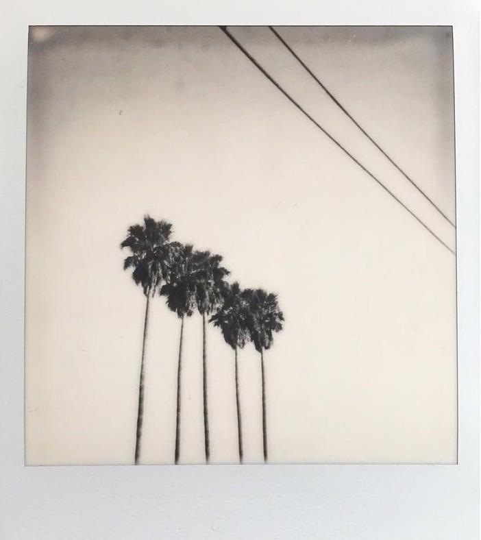 Калифорния, 2017. Фотограф maxhausd