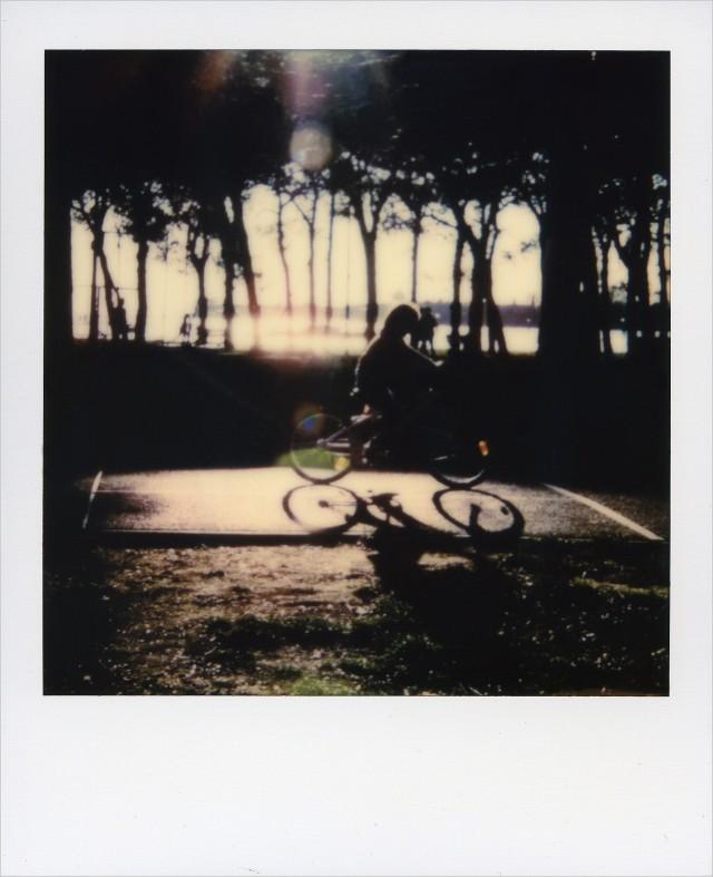 «Венецианские сады». Фотограф kite