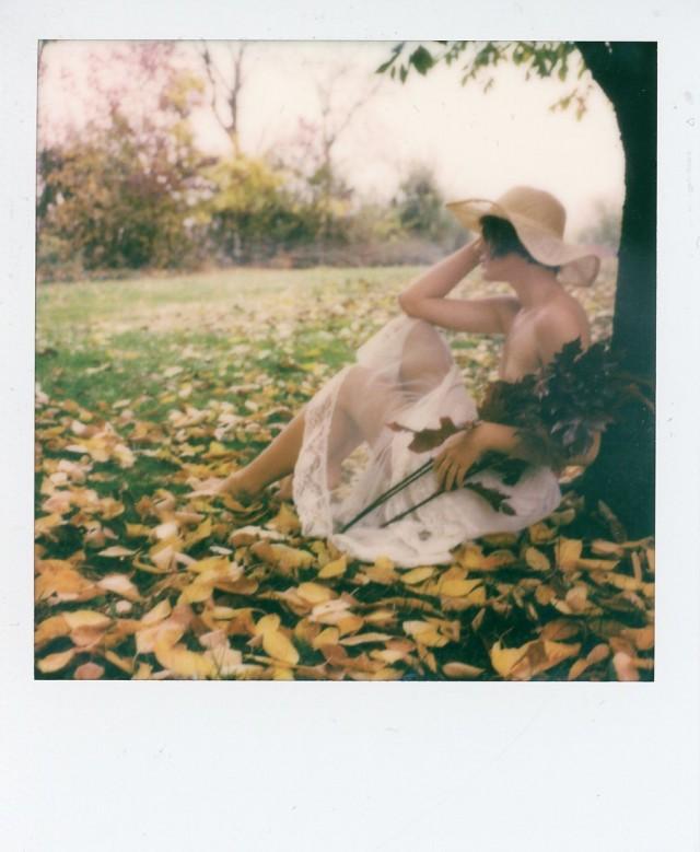 «На осенней траве». Фотограф Alan