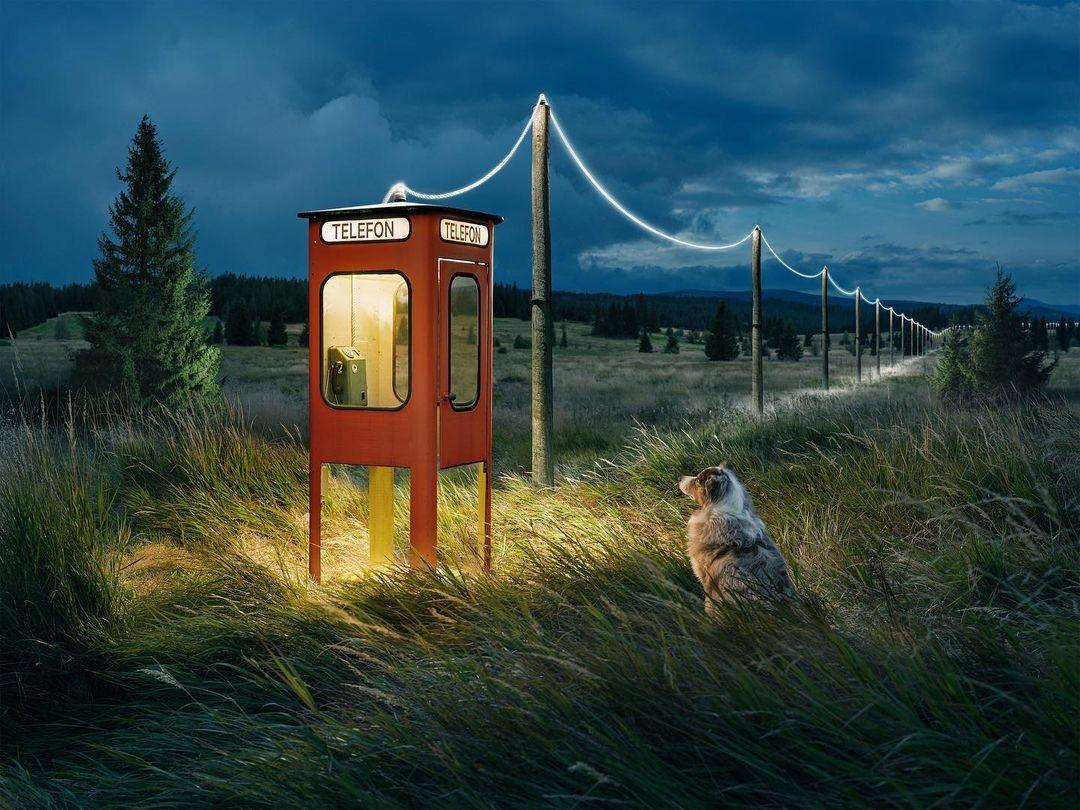 «Если потеряешься, звони». Фон из Чехии, телефонная будка и собака из Швеции. Фотограф Эрик Йоханссон