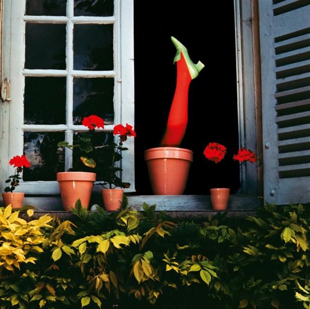 Charles Jourdan, 1971. Фотограф Ги Бурден