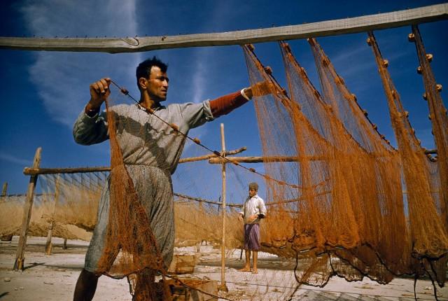 Рыбак сушит сети в городе Сидон (Сайда), Ливан, 1956. Фотограф Дэвид Бойер