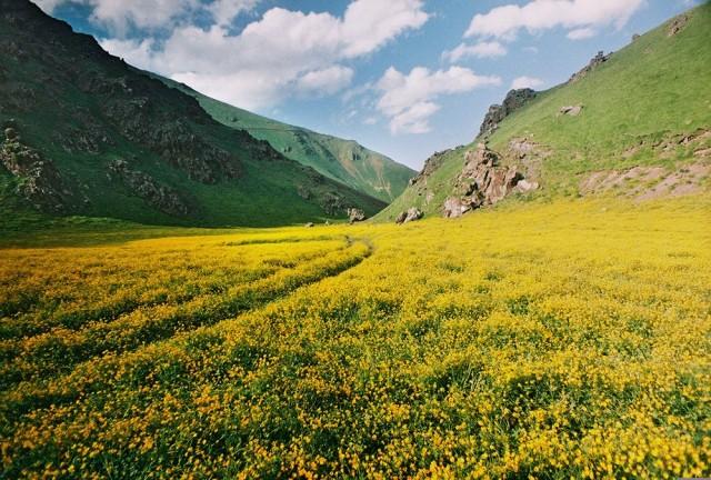 «Кавказ». Фотограф Евгений Воронюк