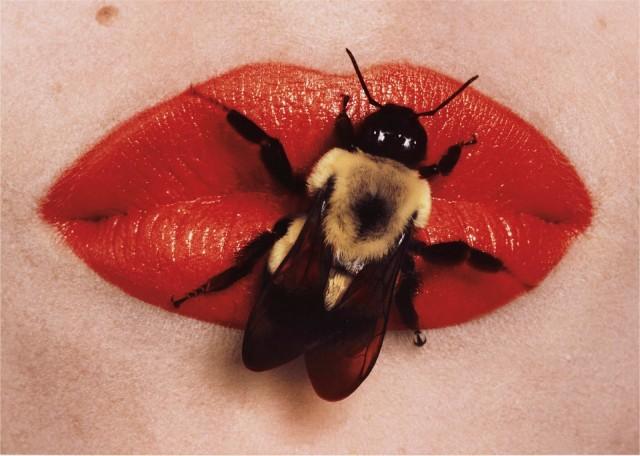 Пчела на губах, Нью-Йорк, 1995. Фотограф Ирвин Пенн