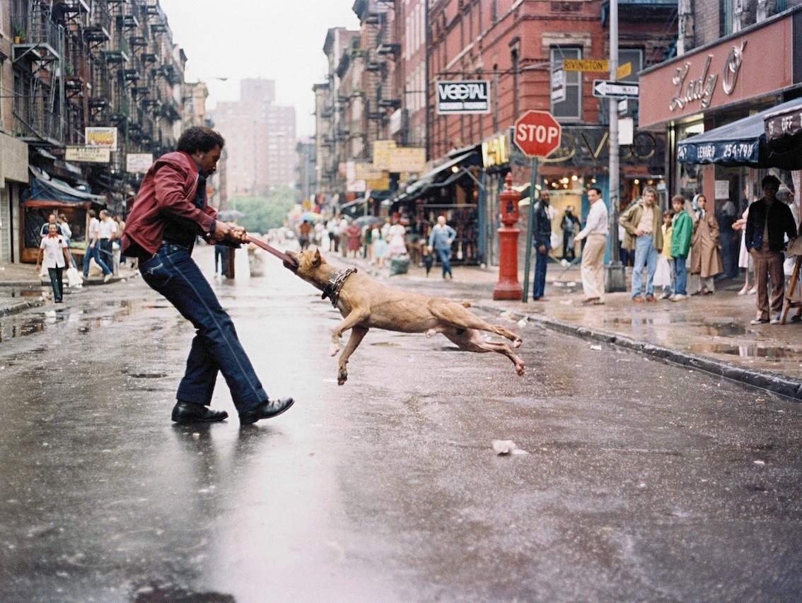 Человек с собакой, Манхэттен, Нью-Йорк, 1980. Фотограф Джамель Шабазз