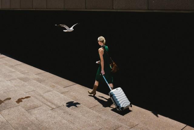 Чайка. Фотограф Хосе Санчес