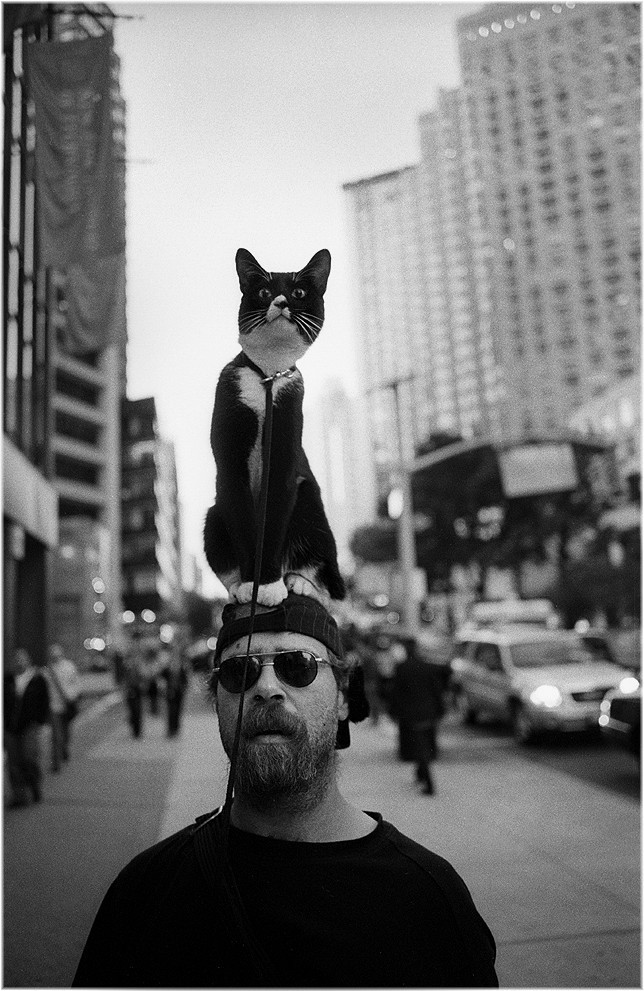 Прогулка с котом, Нью-Йорк, 2008. Фотограф Мэтт Вебер
