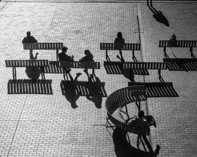 Тени. Фотограф Грэхэм Лонг