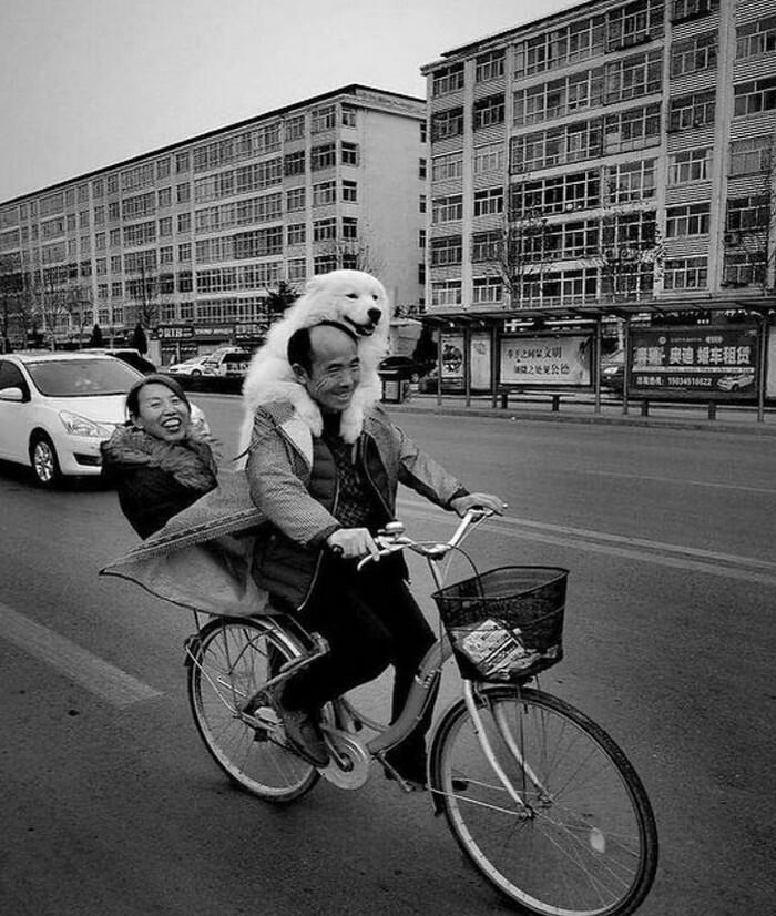 Втроём на велосипеде. Фотограф Jl TaoTao