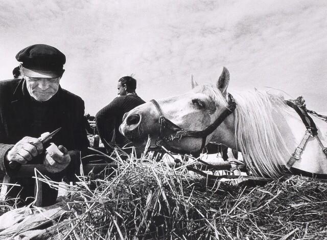 На рынке, 1973. Фотограф Александрас Мацияускас