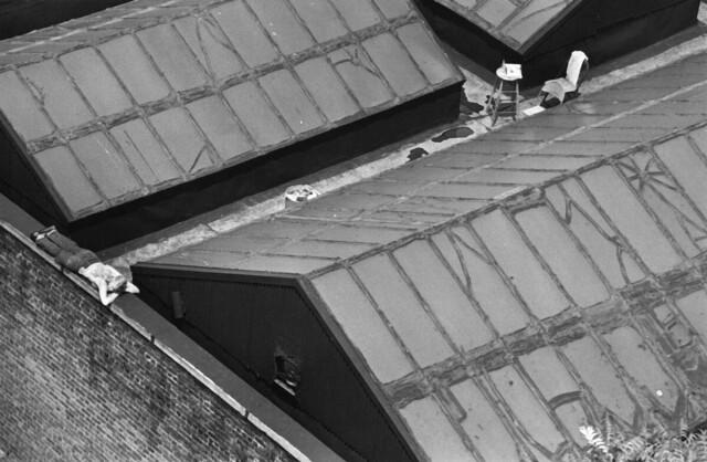 Нью-йоркская художница на крыше, 1977. Фотограф Андре Кертес