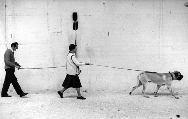 Из фотокниги «Англия в движении, 1970–1990». Фотограф Тревор Эшби
