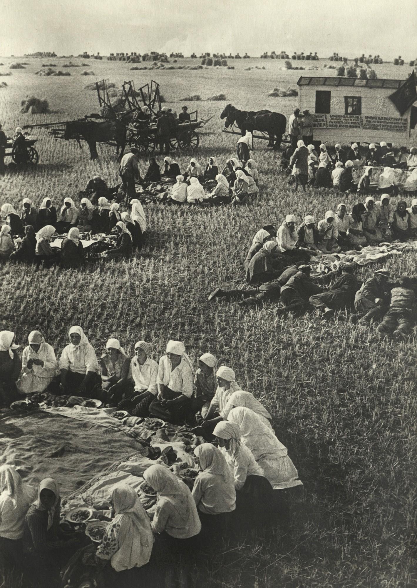 Уборочная, обед в поле, 1934. Фотограф Георгий Петрусов