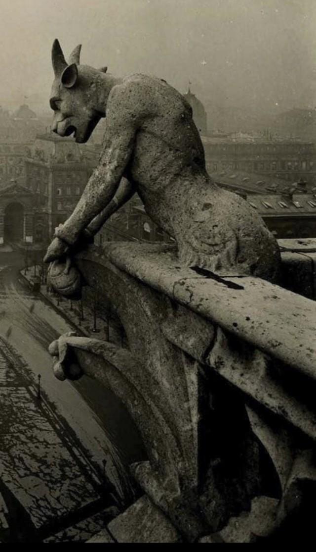 Горгулья Нотр-Дама, Париж, 1910