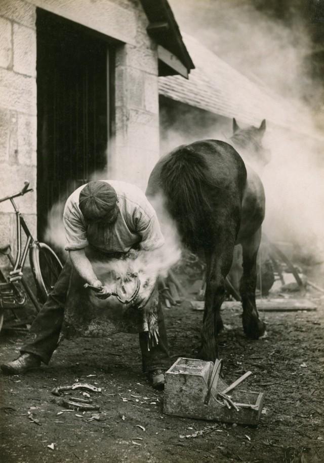 Фермер чистит копыто лошади перед тем, как её подковать. Шотландия, 1921. Фотограф Уильям Рид